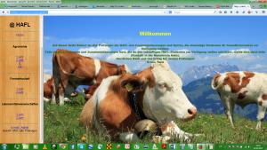 HTML-Seite