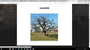 5_gallerie